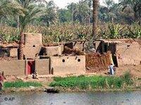 The Nile (photo: AP)