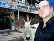 Guy Helminger, cow (photo: Guy Helminger)