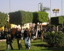 The exhibition grounds of the Cairo book fair (photo: Mona Naggar)