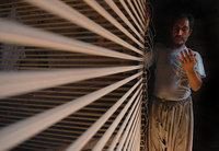 Afghan silk producer (photo: Massoud Hossaini)