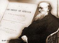 Symbolic picture Darwin (photo: AP)