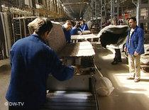 Carpet-weaving factory in Kayseri (photo: DW-TV)