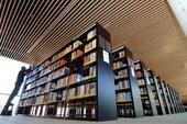 University library in Weimar (photo: dpa)