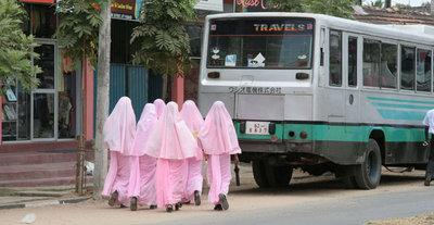 Students from a government Muslim women's teacher training college (photo: Dennis McGilvray)