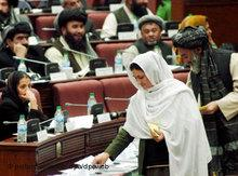 Ballot in the afghan House of Parliament (photo: dpa)
