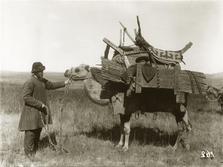 Kazakh nomad and his camel (source: Hamburg Museum of Ethnology)