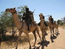 Janjaweed militia (photo: German Foreign Office)