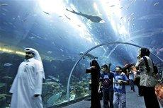 A shopping centre in Dubai with an aquarium (photo: AP)