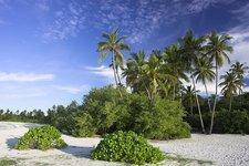 Palm beach on Kuredo, Maldives (photo: Creative Commons)