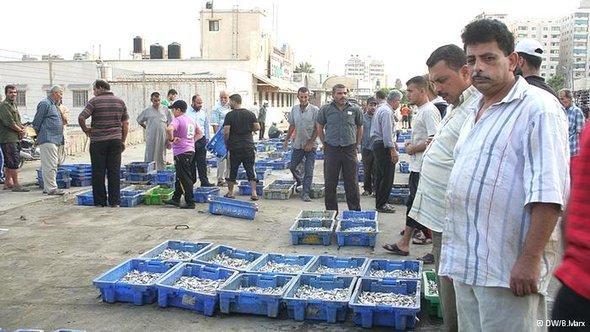 The fish market in Gaza City early in the morning (photo: Bettina Marx/DW)