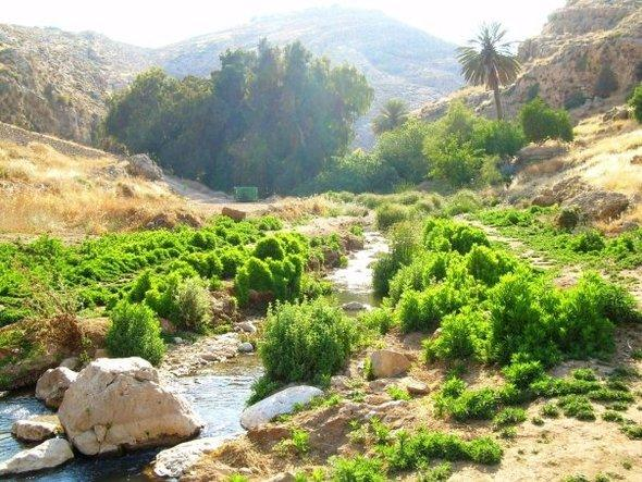 Ein Prat/Wadi Qelt (photo: Wikipedia)