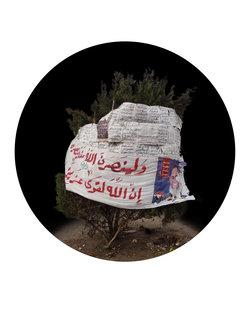 Mohamed Abouelnaga four trees in Tahrir Square (image: Qalandiya International)