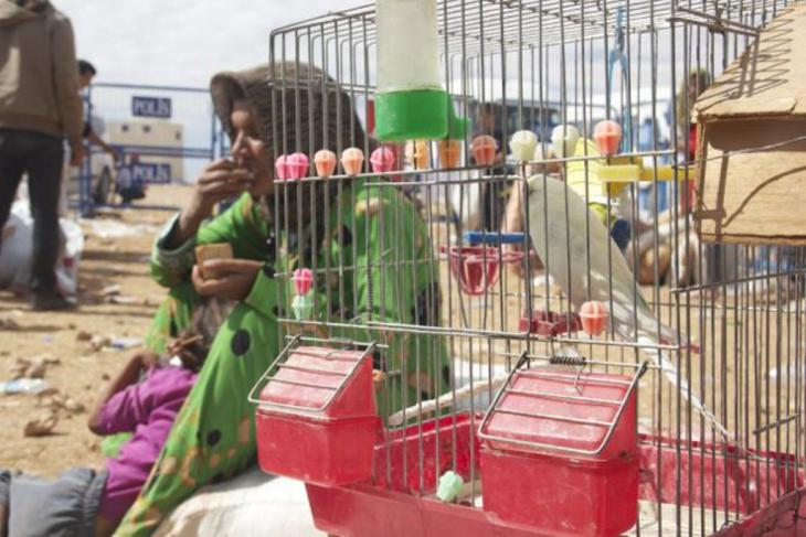 A refugee woman and child sit beside a bird cage, Yumurtalik, Turkey (photo: Kiran Nazish)