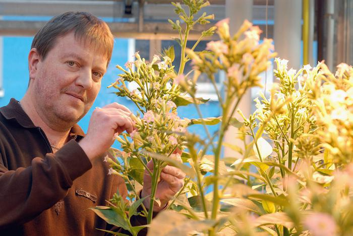 Prof Jorg Kudla, head of the tri-national plant research project (photo: WWU/Peter Grewer)