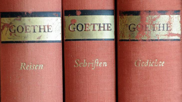 Volumes by Goethe (photo: Fotolia/Stefan Merkle)