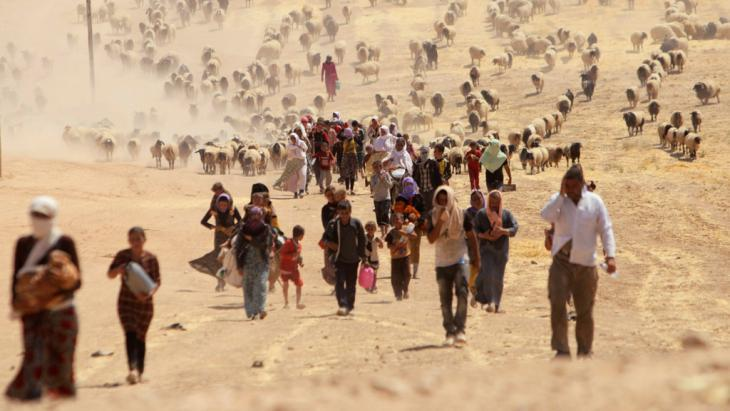 Yazidis fleeing Sinjar in 2014 (photo: Reuters)