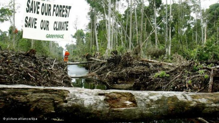 Greenpeace protest against the deforestation on Sumatra, Indonesia (photo: picture-alliance/dpa)
