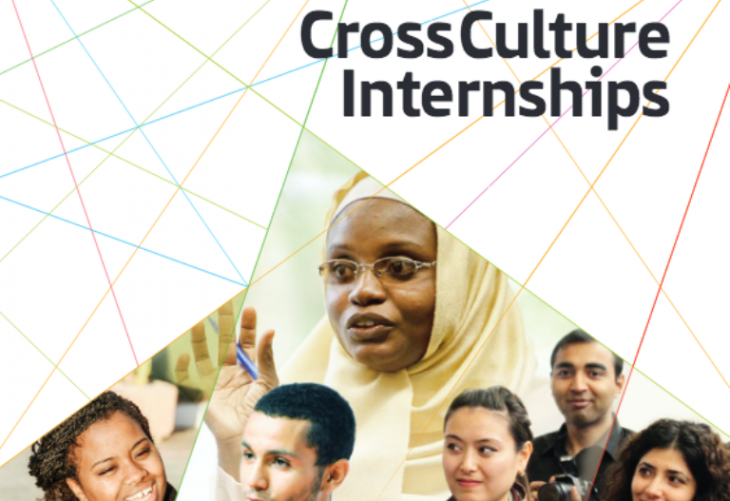Cross culture internships (source: ifa)