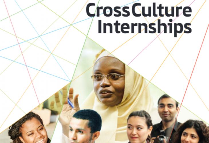 Cross culture internships (source: ifa)
