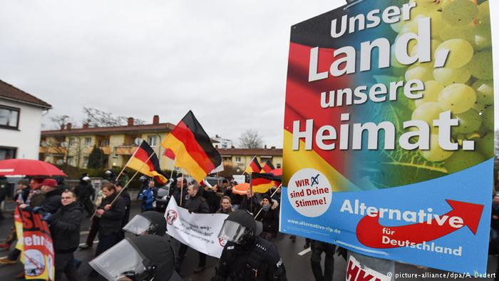 AfD supporters (photo: dpa/picture-alliance)