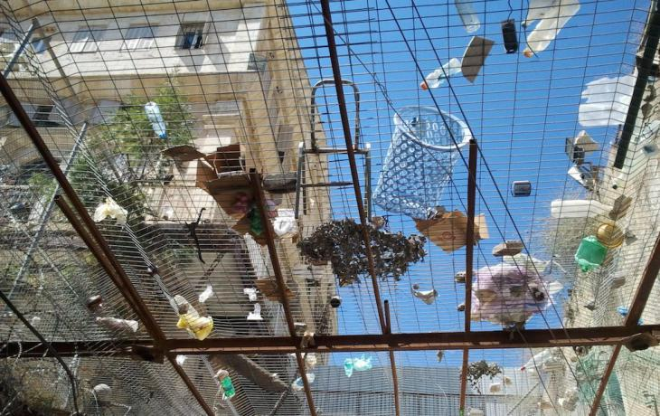 A roof of chicken wire on Al Shallalah Street in Hebron protects Muslims from rubbish thrown by militant settlers (photo: Susanne Kaiser)