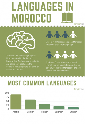 Languages in Morocco (graphic: Tangier Taxi)