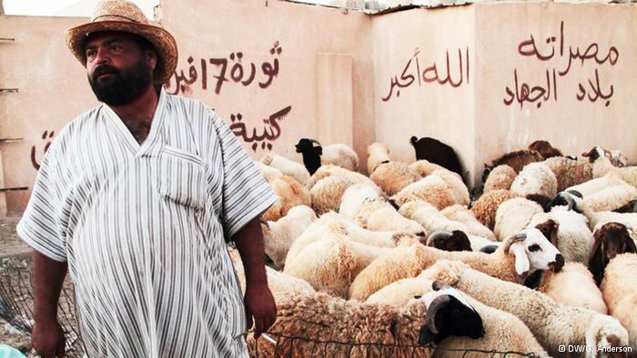 Sacrificial sheep