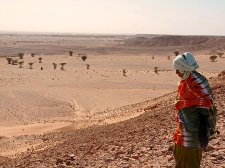 Morocco's wall of land mines