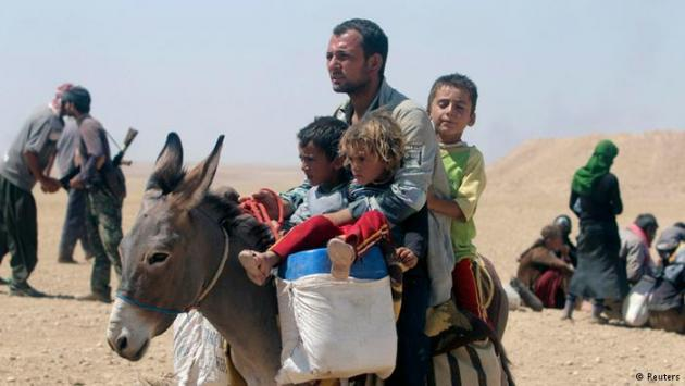 A Yazidi father with three children on a donkey (photo: Reuters)