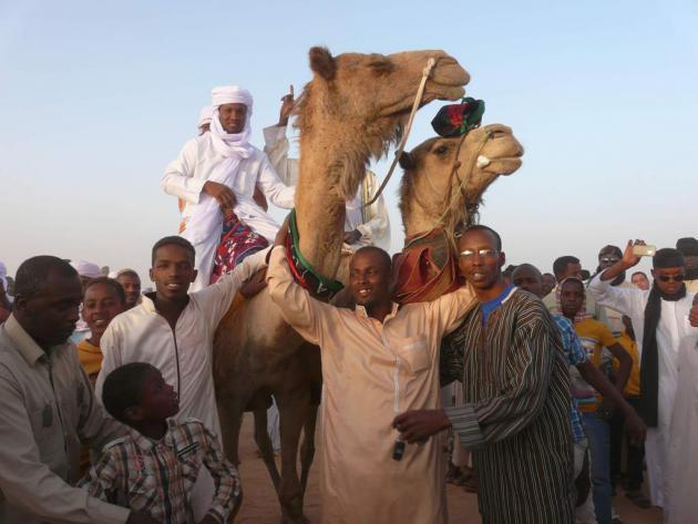 Tebu and camels, Murzug, southern Libya, April 2013 (photo: Valerie Stocker)