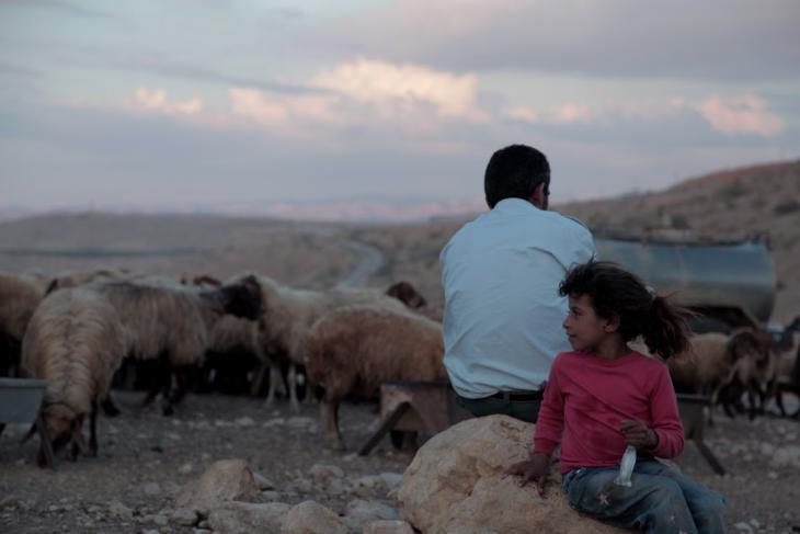 Itidal al Mohammad Alian and her father with their sheep, Al-Maleh, West Bank, October 2014 (photo: Mohammad Alhaj)