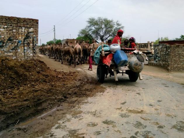 Women on a heavily laden cart on their way to market, Punjab, Pakistan (photo: Usman Mahar)