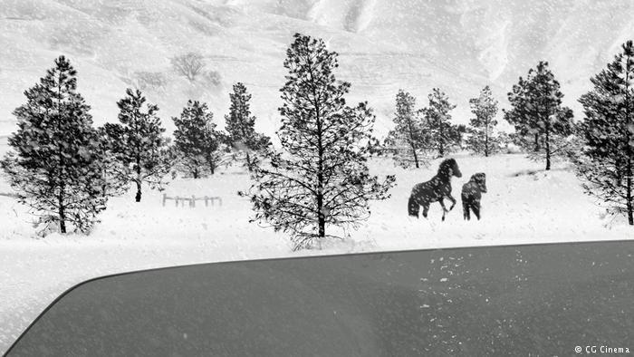 "Film still from ""24 Frames"" by Abbas Kiarostami (photo: CG Cinema)"