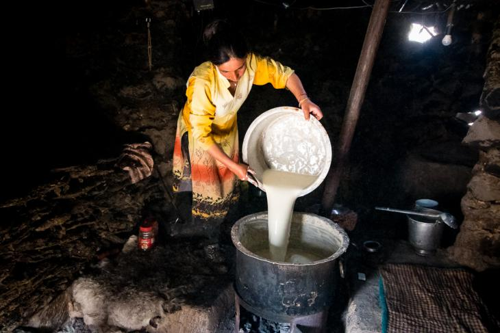 Inayat, a Wakhi shepherdess, fills a large cooking pot with fresh milk (photo: Camille Del Bos)