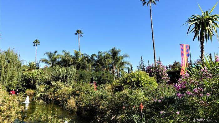 Morocco -ANIMA Garden. Water feature surrounded by tropical trees and shrubs (photo: DW/V. Witting)