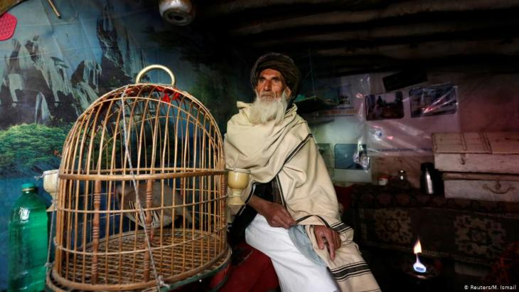 Mohammad Jan, 67, sits beside a cage of partridges in a shop at Ka Faroshi bird market in Kabul, Afghanistan (photo: REUTERS/Mohammad Ismail)