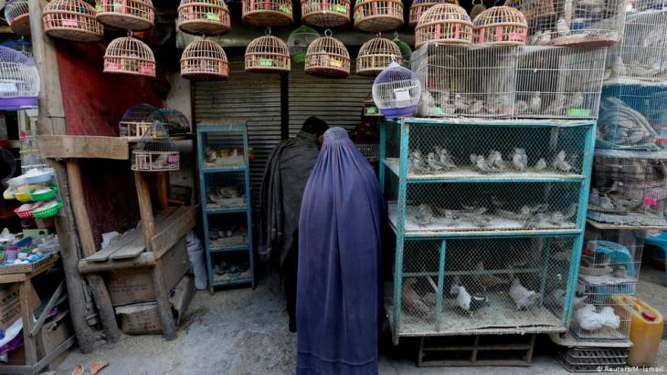 An Afghan woman clad in burqa stands in front of a shop at Ka Faroshi bird market in Kabul, Afghanistan (photo: REUTERS/Mohammad Ismail)