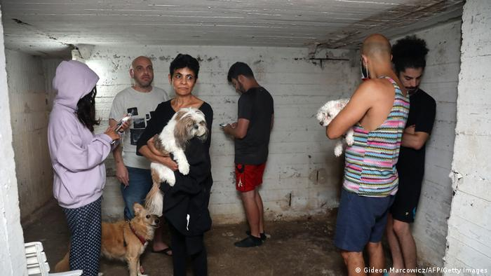 Six people and three dogs wait in a walled room with a low ceiling