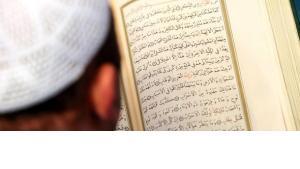 Boy reading the Koran (photo: dapd)