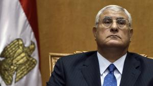 Egypt's interim president Adly Mansour (photo: AFP/Getty Images)
