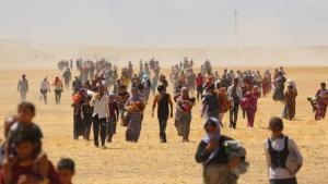Yazidis trapped in the Sinjar mountains fleeing from IS (photo: picture-alliance/AA)