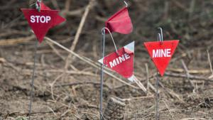 Markers indicating the location of landmines (photo: imago)