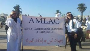AMLAC supporters calling for a stop to illegal abortion and a legalisation of abortion (photo: private)
