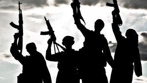 Jihadist fighers for Islamic State (photo: Colourbox/krbss)