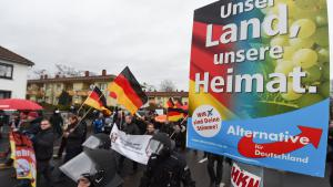 PEGIDA demonstration in Mainz (photo: picture-alliance/dpa/A. Dedert)