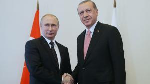 Putin and Erdogan shake hands at a recent meeting in St. Petersburg (photo: picture-alliance/TASS/M. Metzel)