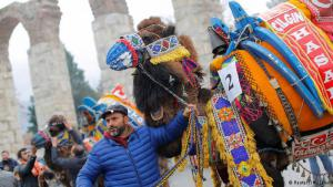 1.	On the eve of the traditional camel wrestling festival in the western Turkish city of Selcuk, the first priority is to impress the beauty contest selection committee. Candidates are draped in colourful attire and hung with bells. The camels are then led on a rope through the streets accompanied by the sounds of drums and flutes