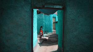 The blue of Harar: the houses in the old quarter are the most spectacular aspect of the city′s cultural heritage. Deceptively plain in appearance on the outside, the traditional houses always feature a courtyard and feature exquisitely designed interiors. The majority of these traditional houses have been preserved