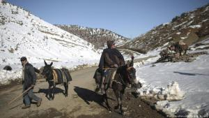 Berber villagers ride their donkeys through snow covered mountains in Tighanmin, a Middle Atlas village near Azilal, central Morocco, on 15 February 2018 (photo: AP Photo/Mosaʹab Elshamy)