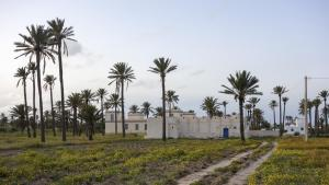 Traditional architecture on Djerba (photo: Philipp Poppitz/Creative Commons 4.0; https://creativecommons.org/licenses/by/4.0/)